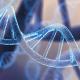 Tout ce que vous devriez savoir sur les examens génétiques en pédiatrie